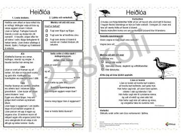 Heiðlóan -  lesskilningsverkefni