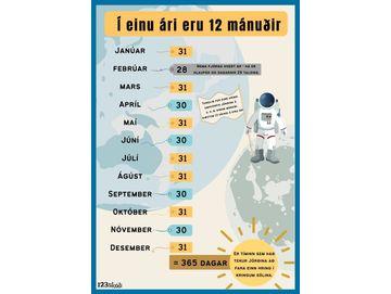12 mánuðir