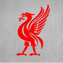Liverpool Bird.