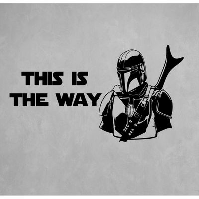 this-is-the-way-2