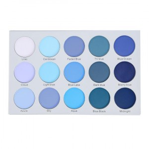 ES22 15 Color Smoky Blue Eyeshadow