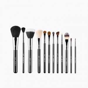 Essential Kit Professional Brush Collection