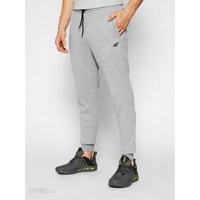 i-4f-spodnie-dresowe-h4l21-spmd010-szary-regular-fit