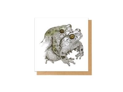 Charlotte Nicolin - Tækifæriskort Froskar