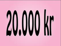 20.000 kr