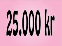 25.000 kr.