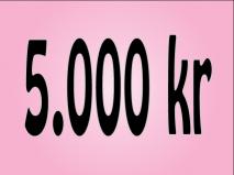 5.000 kr.