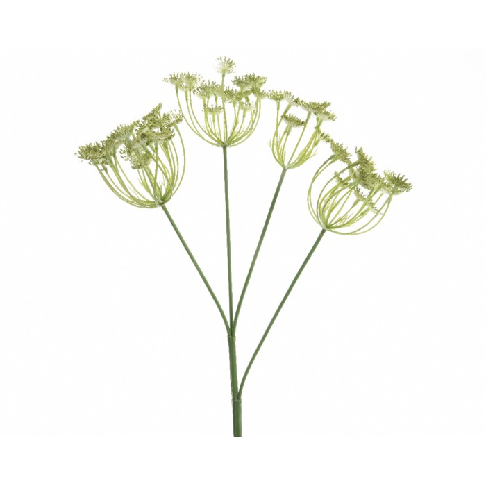 Decoris-Hogweed Græn 80cm (12).