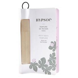 Hypsoe ilmur Fig Tree Leaf