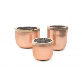 Paddywax Foundry Candle Copper Bergamot and Mahogany