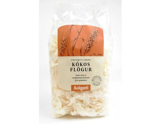 Sólgæti lílfrænar Kókosflögur 250 gr.
