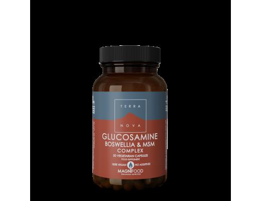 Terranova Glucosamine Boswellia & MSM Complex 50 vegan hylki