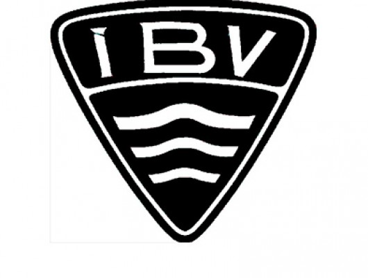BVLogo2fyriribvsport_5