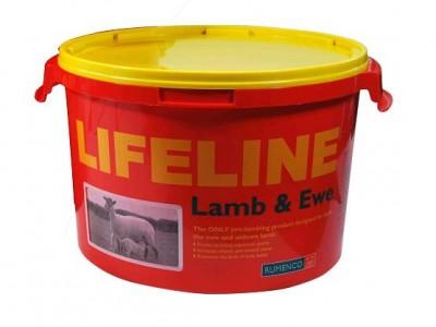 Lifeline fyrir Lömb og ær