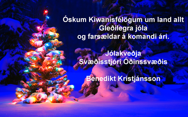 Jólakveðja frá Óðinssvæði !