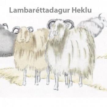 lambarettadagur_heklu