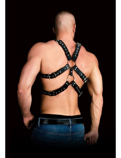 Andres bringu harness