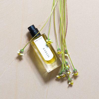 ONE SEED - Seeker eau de parfum