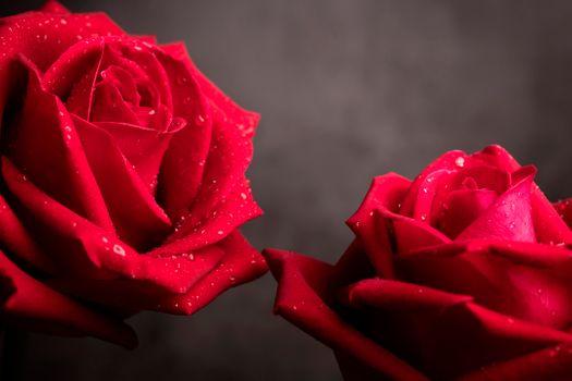 Valentínusardagur og konudagur