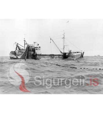 Gullberg NS-11.