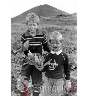 Bræðurnir Daði og Héðinn,