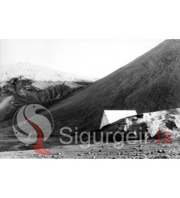 Pálsbær í Surtsey.
