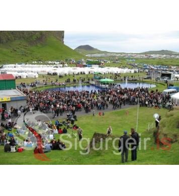 Þjóðhátíð 2010