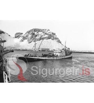Guðmundur RE-29.