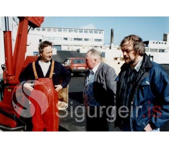 Hermann, Beggi og Siggi.
