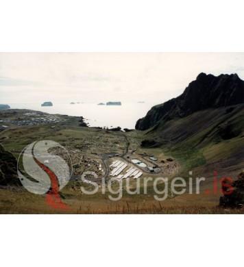 Þjóðhátíð Vestmannaeyja.