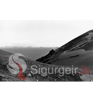Í Surtsey.
