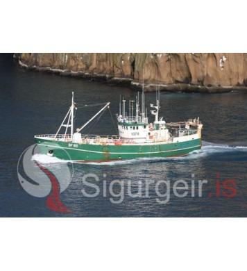 Erlingur SF-65.