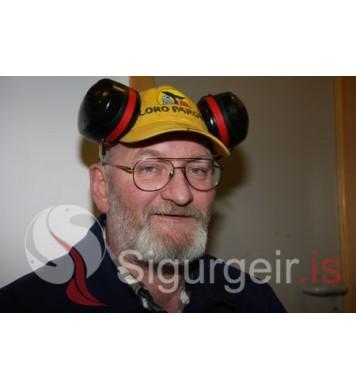 Páll Georgsson.