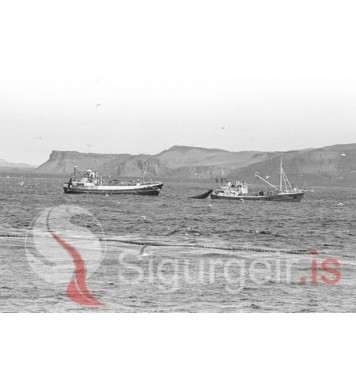 Sandfell GK-82 og Bergur VE-44.