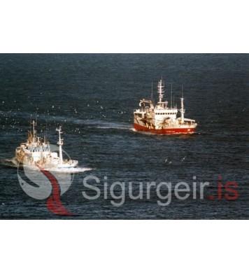 Kap VE-4 og Gullberg VE-292.
