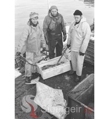 Svavar, Jóhannes og Óskar.