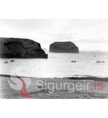 Síldveiði við Höfðavík.