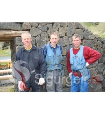 Keli, Gunnar og Leifur.