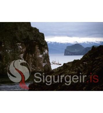Sigurður VE-15.