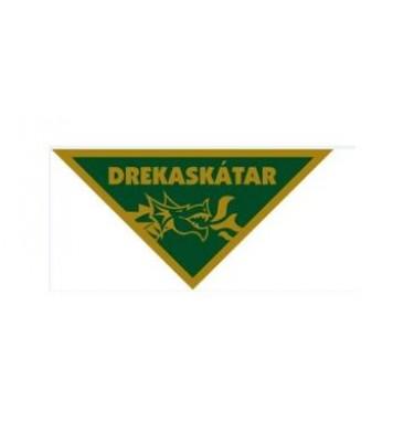 Ofið drekaskátamerki brons