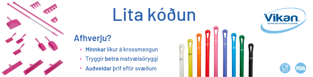 litakóðun