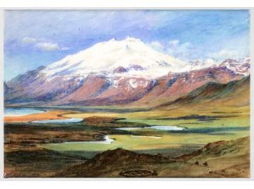 Segull. Collingwood Snæfellsjökull