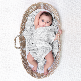 aden+anais zebra plant comfort knit swaddle blanket