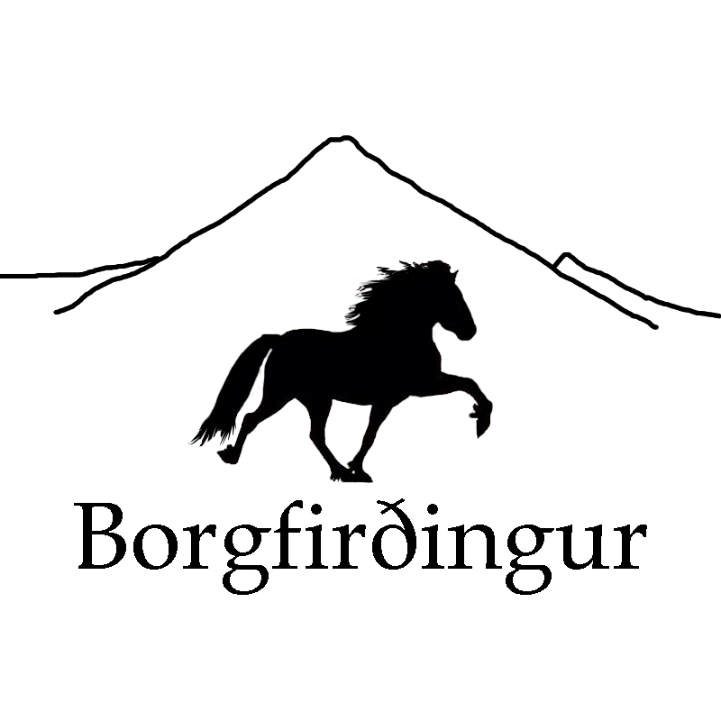 borgfirdingur