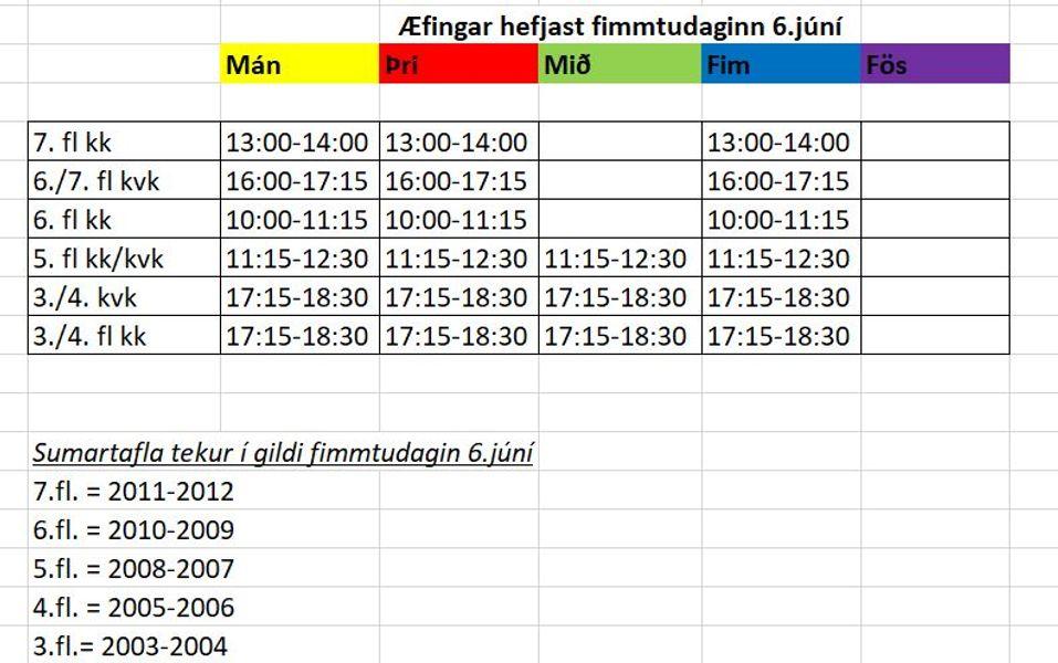 fingar-sumar-2019-knattspyrna