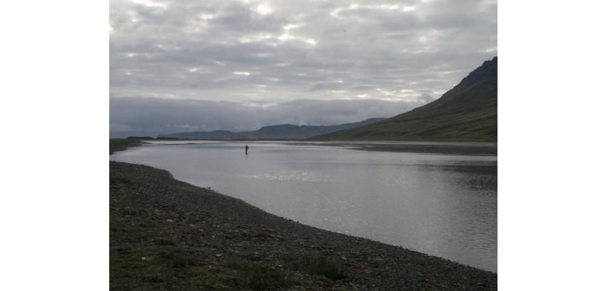 Norðfjarðará 2016 lokatölur